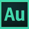 Adobe Audition 3.0中文版